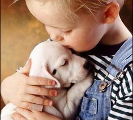 hayvan-sevgisi